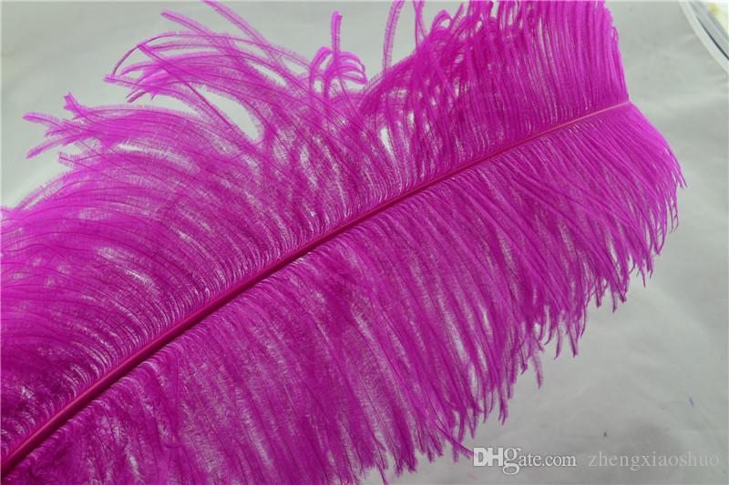 Plume d'autruche en gros plumes Hot Pink 18-20