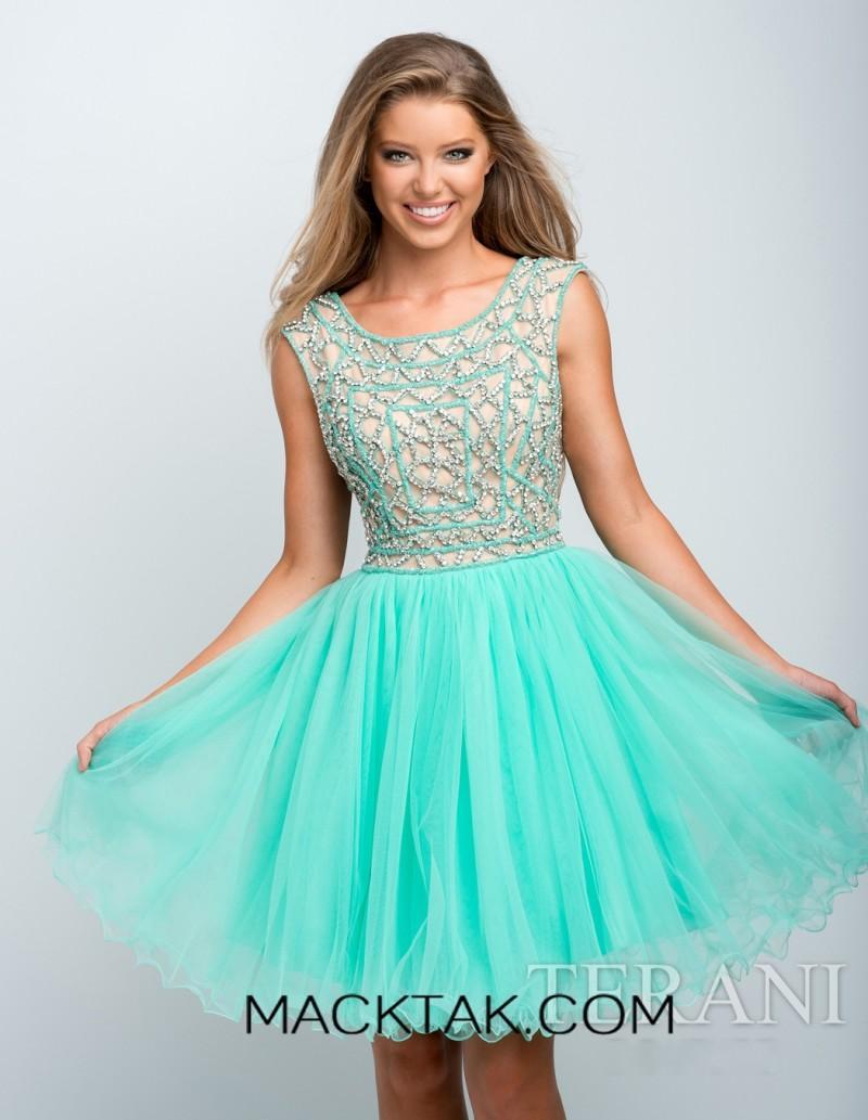 7733e17ee36 speleomyotis  2 Piece Plus size prom dresses