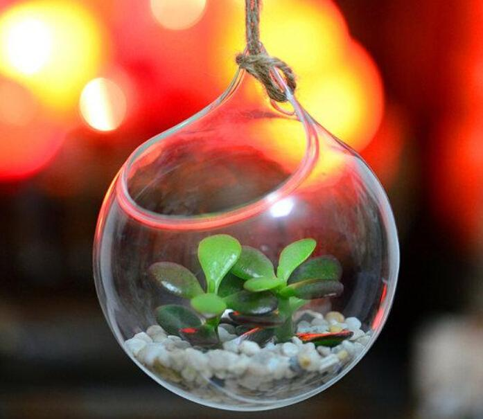 Set Of 3 Big Opening Mouth Round Glass Terrariums Fish Tank Wall