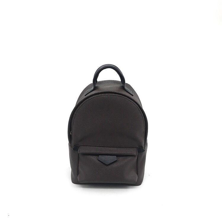 AAA NEW 2017 BAG 100% Leather NEW PALM SPRINGS BACKPACK MINI Handbag SMALL  NEW PALM SPRINGS BACKPACK MINI HANDBAG School Bags Backpack With Wheels  Dakine ... d38e95dd00d5e