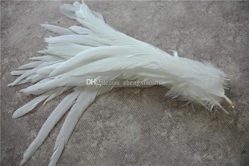 Gratis frakt Partihandel 100st / Parti 12-14inch Pure White Coque Rooster Hackle Tail Feather for Crafts Decor