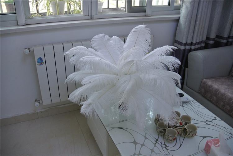 Freies Verschiffen preiswerte weiße Straußenfeder plumes 14-16inch 35-40cm Hochzeit Mittelstücke Dekor Feder Herzstück Partei Dekor