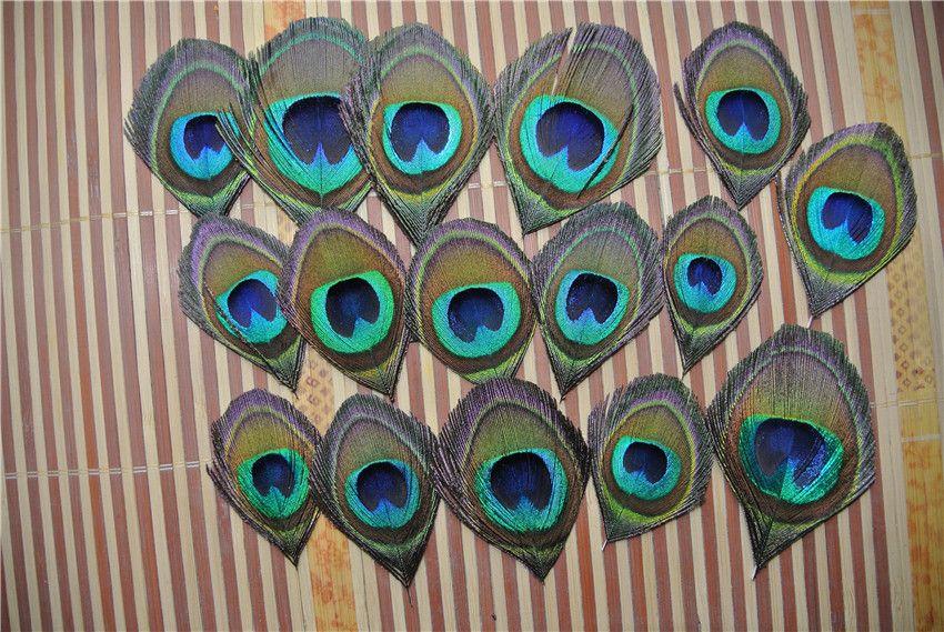 Envío al por mayor-Libre / Alta calidad Trimed PEACOCK pluma de ojo para el arte