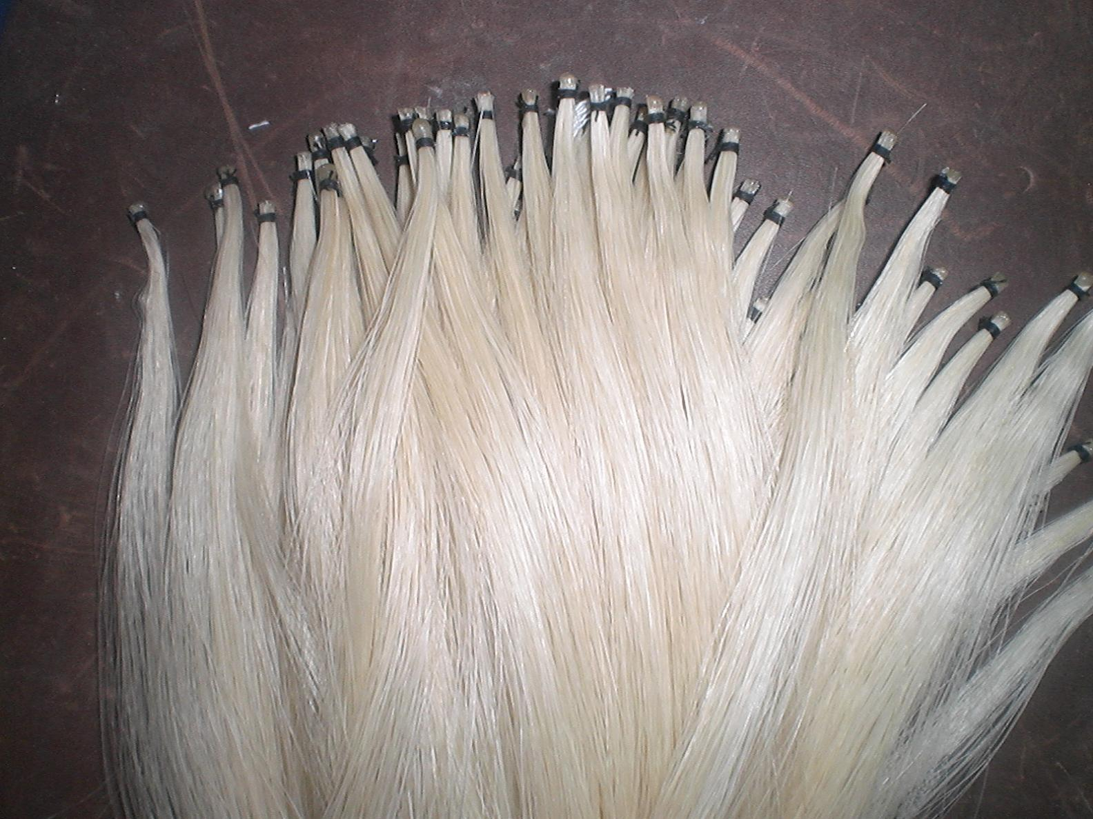 10 Hanks Quality Violin Bow Hair in 81cm and 6 grams/hank Horse hair