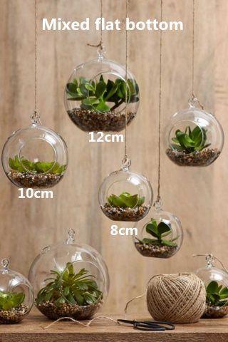 Hanging Globe Terrarium Kits Moss Succulent Garden Planter Flat