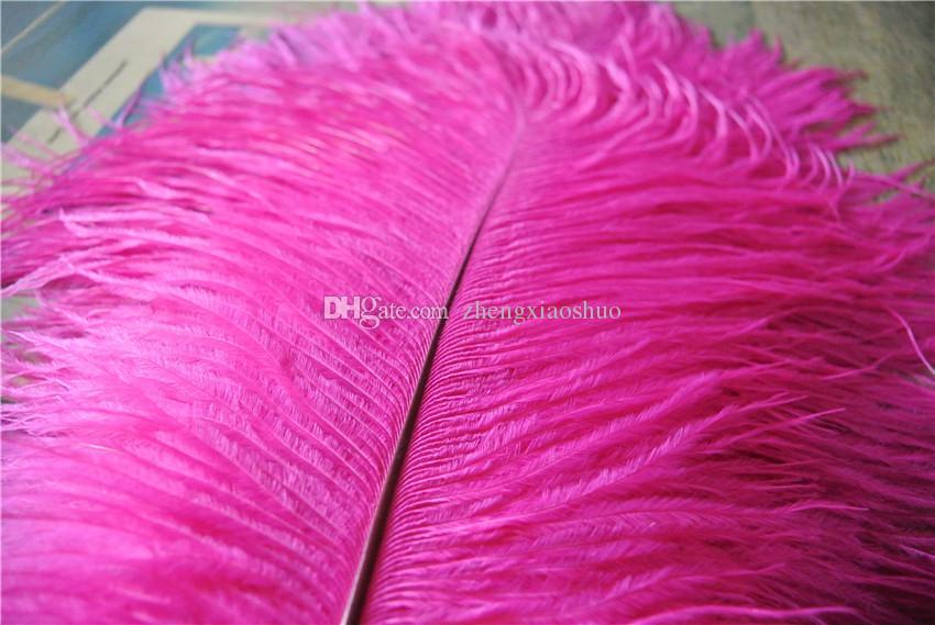 도매 타조 깃털은 핫 핑크 18-20