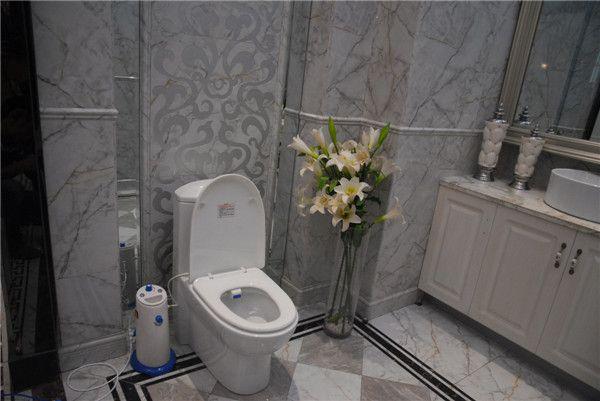 See larger image. 2017 Portable Vagina Bidet Toilet European Toilet Bidet In 8100