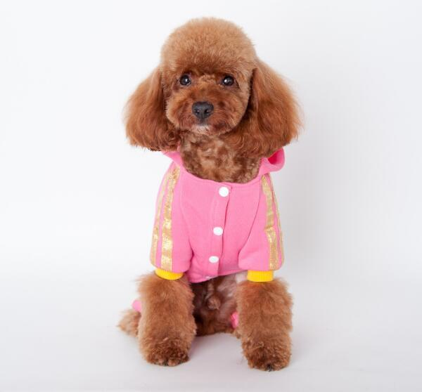 Hot sales Dog Apparel dog clothes cotton warm winter warm small dog clothes puppy dog clothes Angel letter