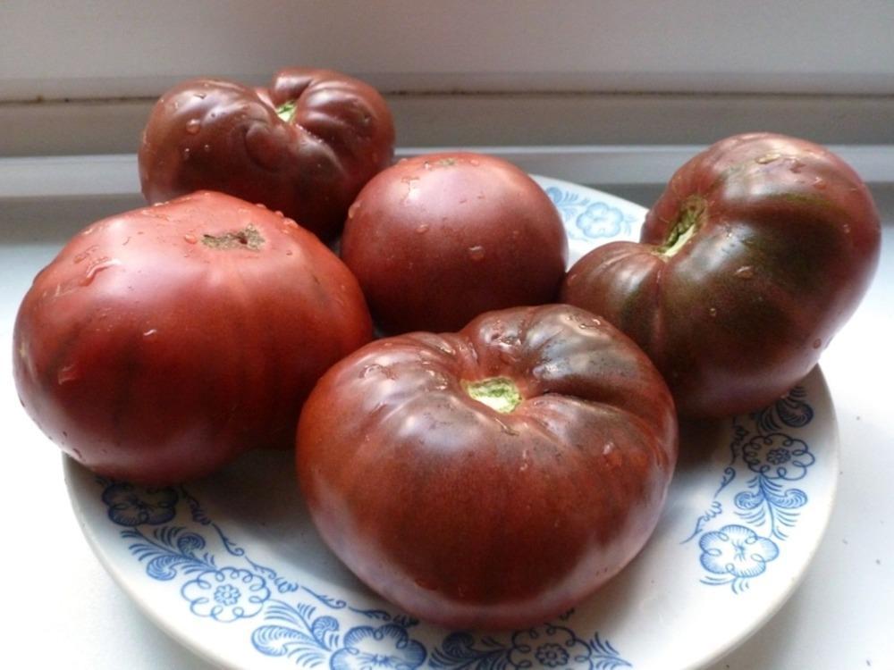 Seltene Tomate Schwarz Russisch Samen Organische Russisch Gemüse Erbstück Samen 100 stücke S043