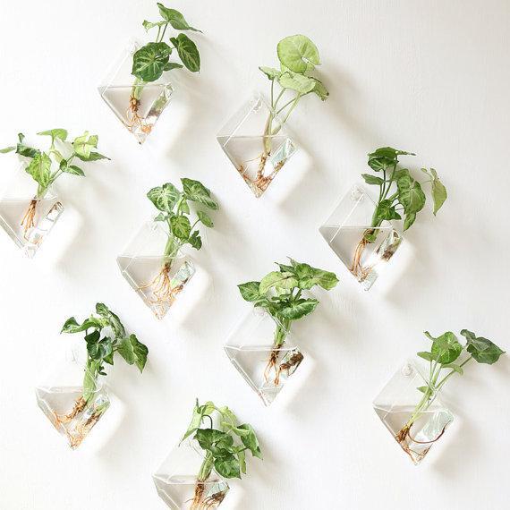 Set Of 9 Rhombus Glass Wall Vaseindoor Wall Plantersrooting