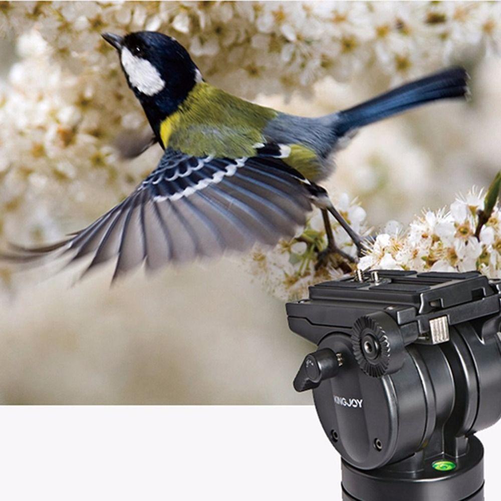 KINGJOY VT-2500 Fotografia Equipment Professional Heavy Duty DV Video Camera SLR câmera tripé com Fluid Pan cabeça Kit