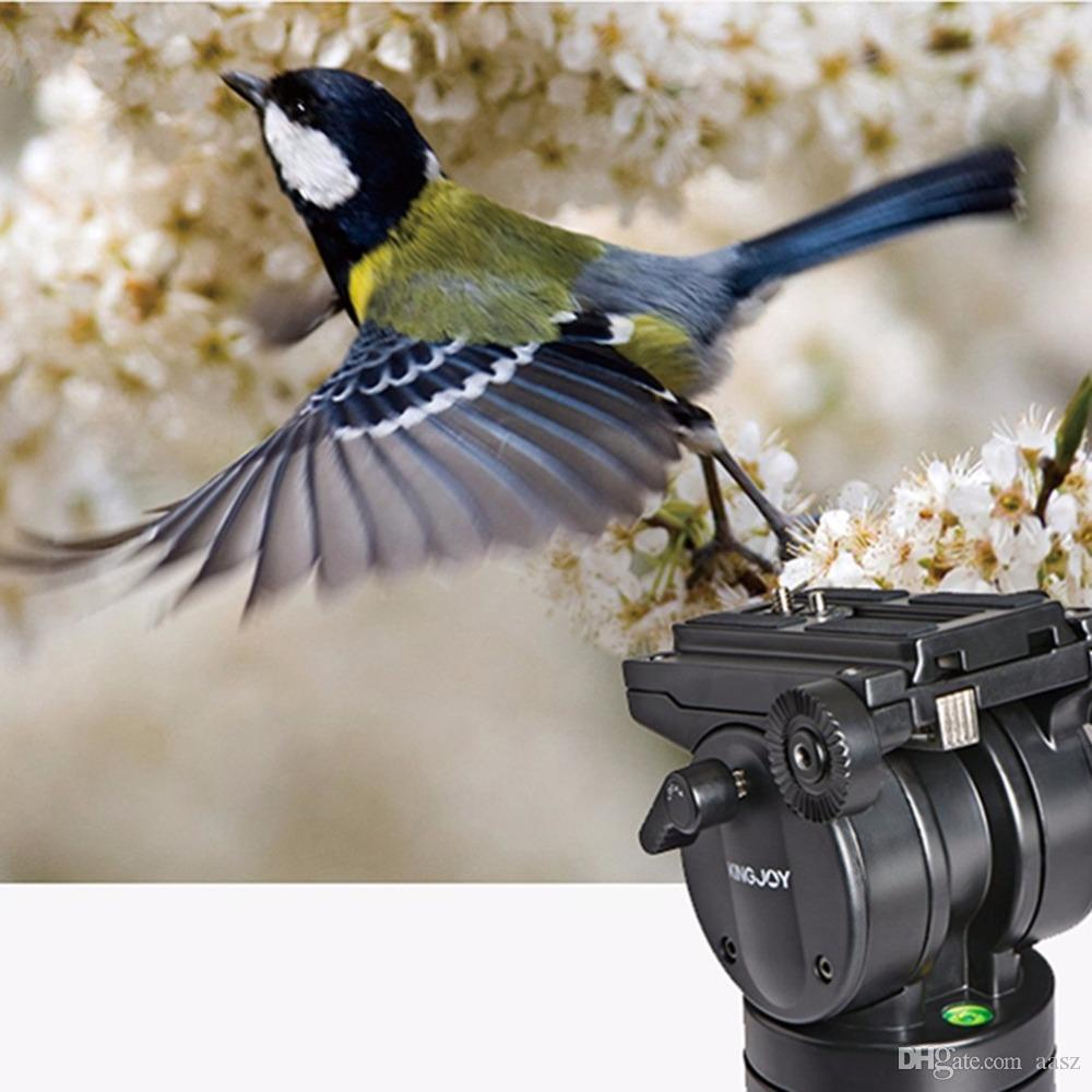 KINGJOY VT-2500 Professional Photography Equipment Heavy Duty DV Video Camera SLR Camera Tripod with Fluid Pan Head Kit
