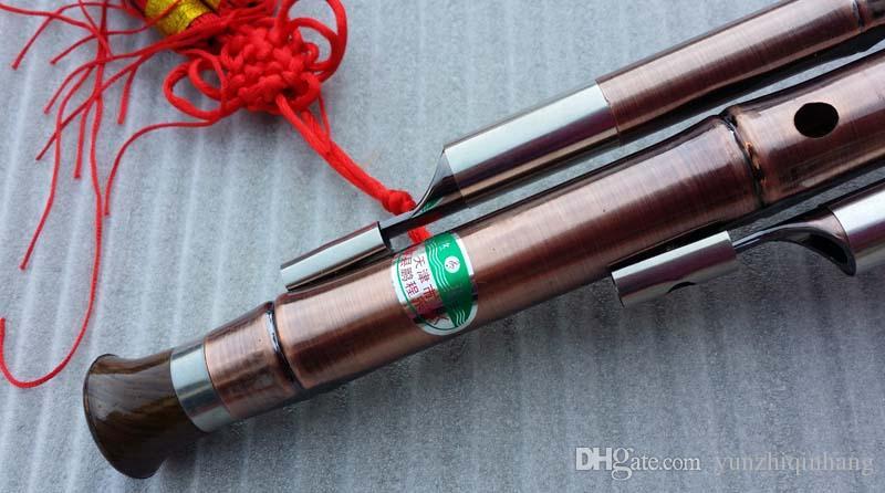 Strumento a fiato professionale Yunzhi cinese Hulusi zucca Cucurbita flauto con custodia