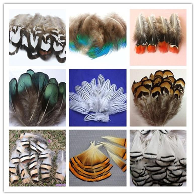 Atacado bonito faisão cauda penas de pavão 4-10 cm / 2-4 polegadas partido decorativo pena acessórios de vestuário