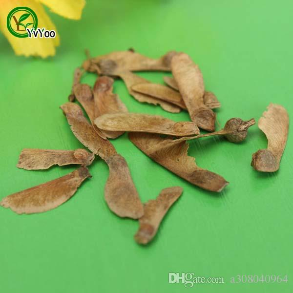 Кленовые семена бонсайские семена деревьев очень красивые крытые дерево дома садовый завод 20 частиц / сумка R012