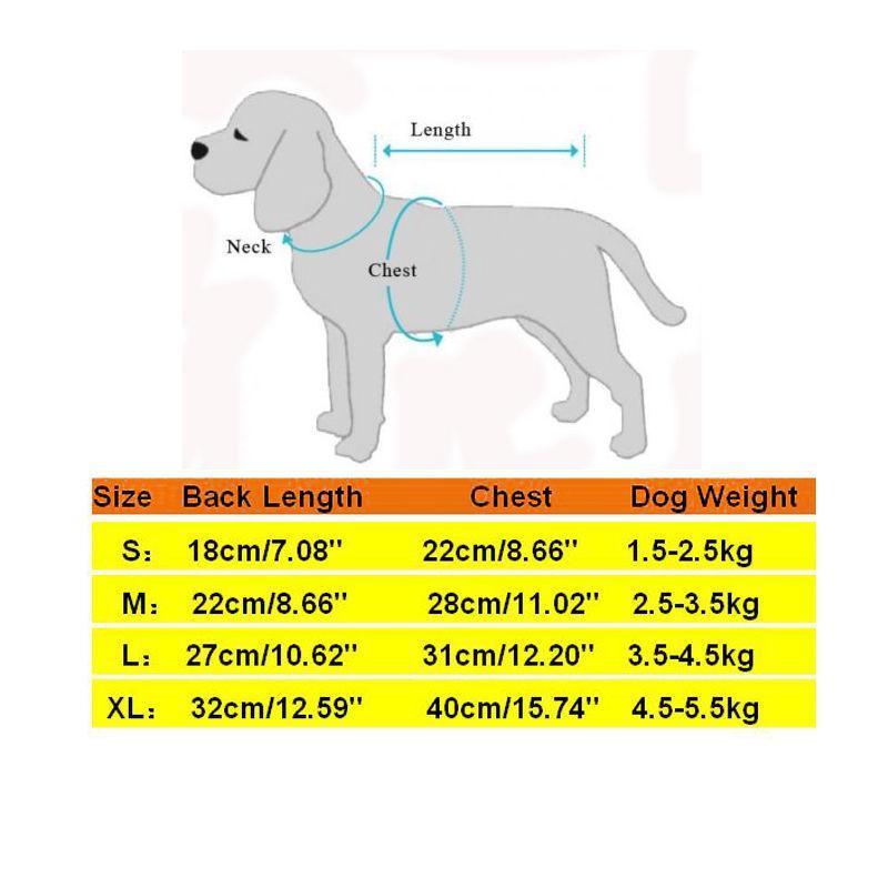 Manteau de pluie pour animaux de compagnie Manteau de chien d'extérieur Manteau pour chien Vêtements imperméables transparents