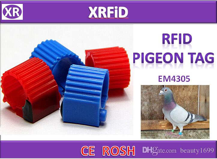 Version3 opend Type EM4305 rfid pigeon ring tag Dia 10mm 134.2khz ABS pigeon tag blank format Free Ship