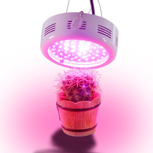 energy best led plant hydroponic lamp and light hot growing flowering saving of new for grow sale lights indoor clip flexible