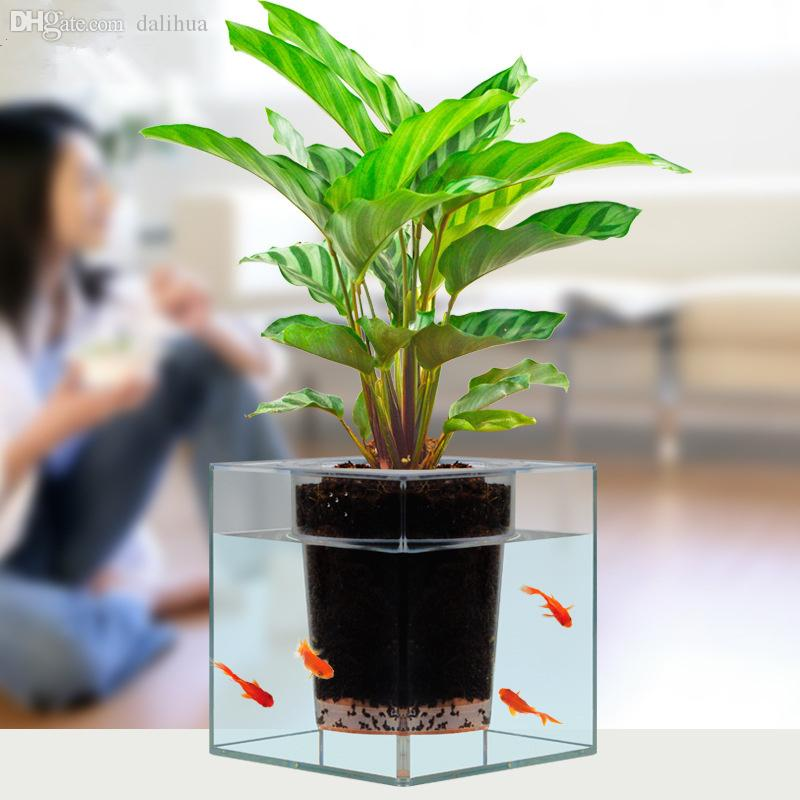 Potted Plant Transparent