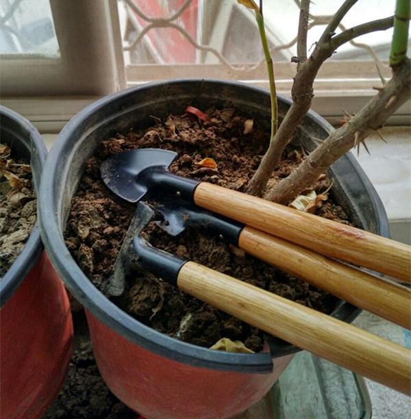 Mini Garden Hand Tool Kit Plant Gardening Shovel Spade Rake Trowel Wood Handle Metal Head Gardener