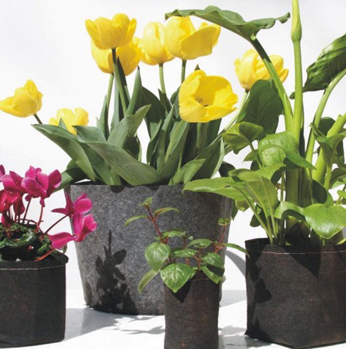 Pots de plantes en tissu non tissés ronds Pochette Root Container Grow Bag Aération Pots de fleurs Conteneur Planteurs de jardin