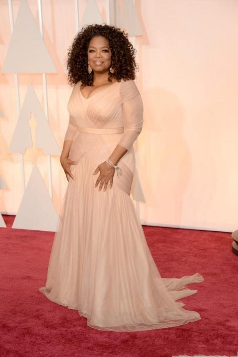 2019 New Cheap Oprah Winfrey Oscar Celebrity Dresses plus size v neck sheath tulle with long sleeves Sweep Train Draped evening Dresses 312