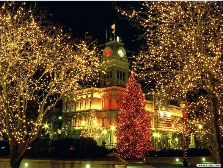 10M 20M 30M 50M 100M 800 LED String Fairy Light Xmas Decor Light Red/Blue/Green Colorful Christmas Light Party Wedding Light Twinkle Light