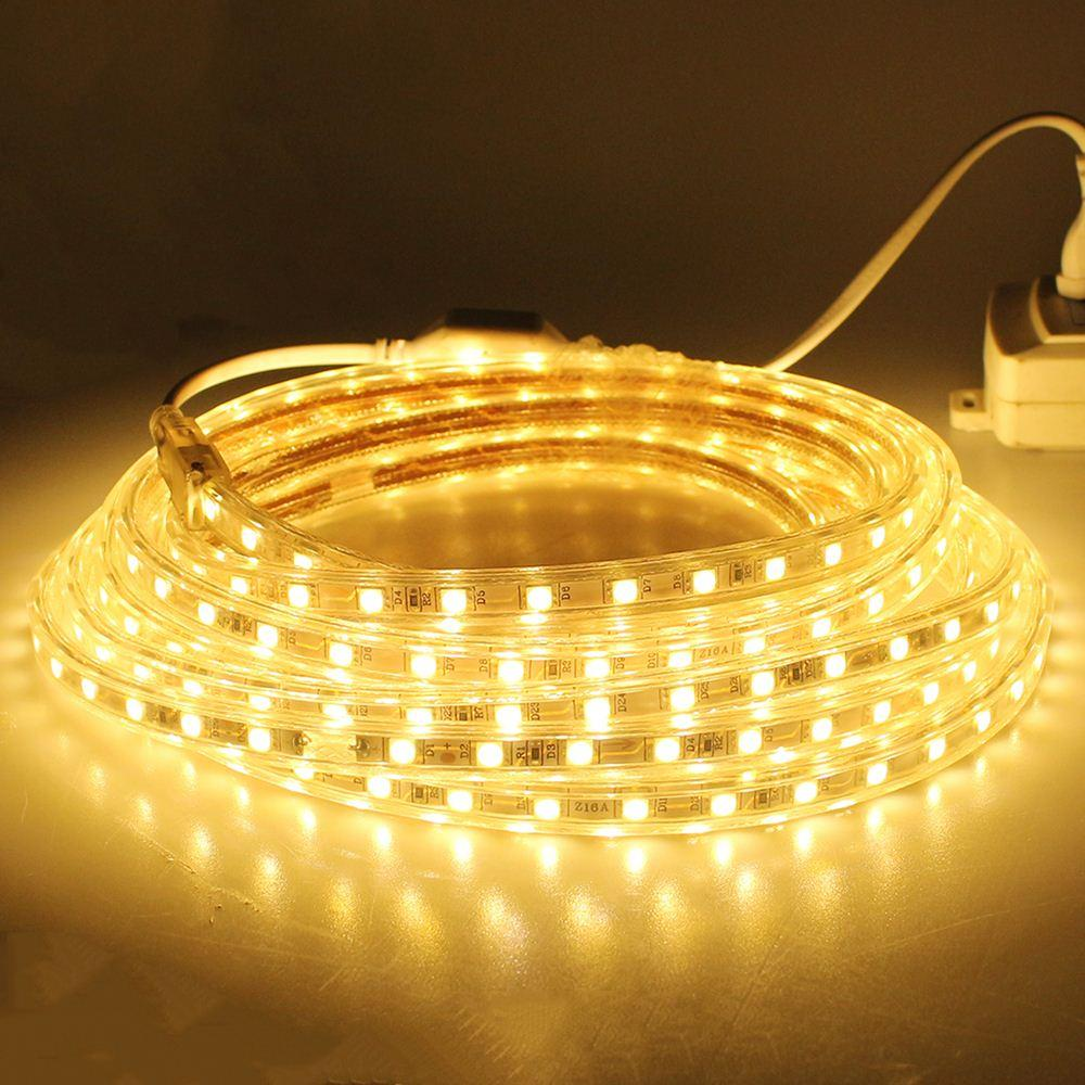 5m 220V SMD 5050 led strip light+Power plug,warm white/white,60leds/m 5m/lot waterproof IP67 led Strips free shipping