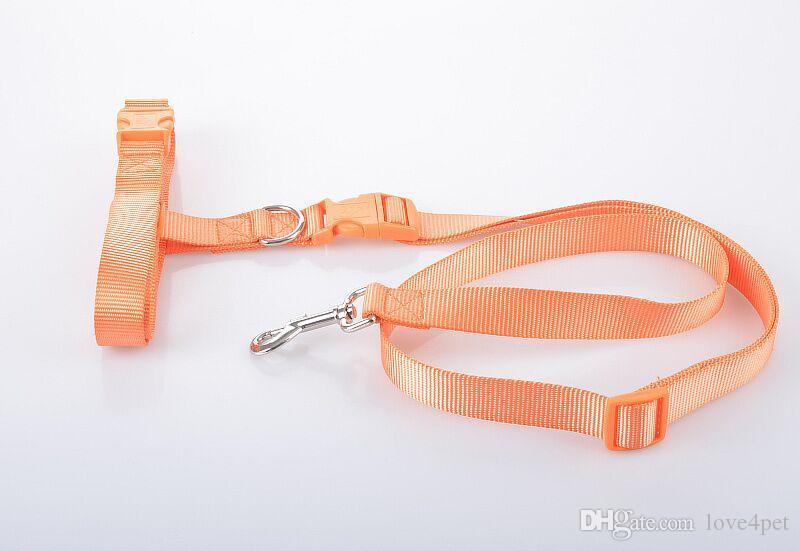 D28 Sección más gruesa para mascotas perro Correr cuerda de tracción perro cuerda de tracción para correr por la mañana exterior Envío de alta calidad