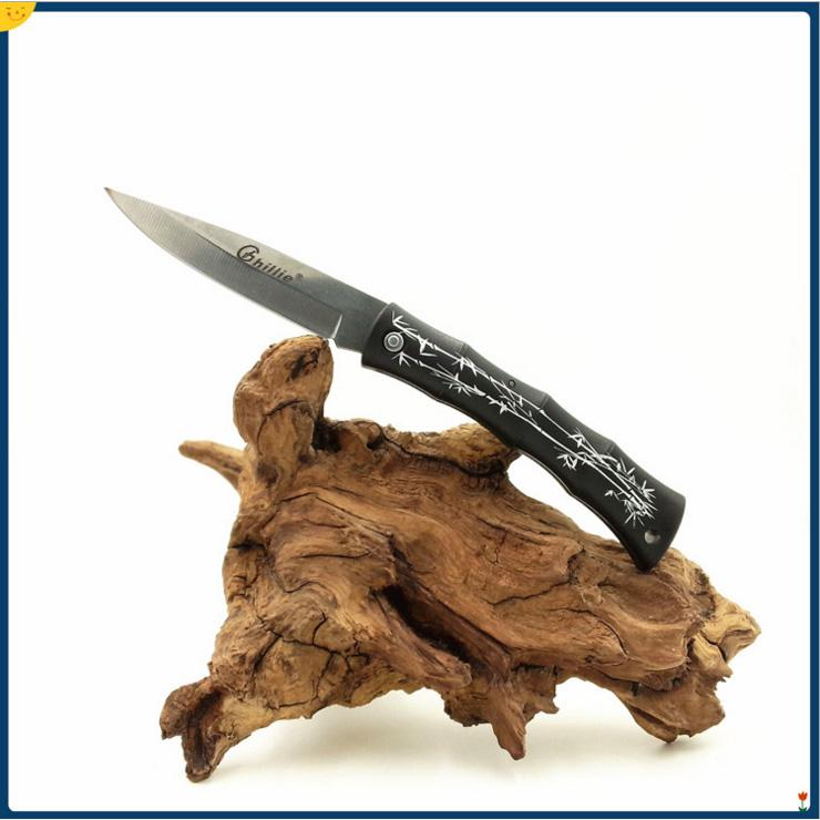 Ghillie EDC Pocket Fruit Knife 420C Pieghevole Blade ABS Handle Mini Survival Coltelli