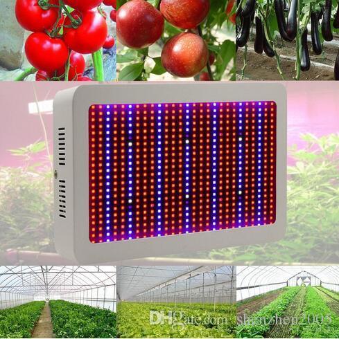 높은 품질 600W 전체 스펙트럼 LED 빛 성장 레드 / 블루 / 화이트 / 자외선 / 적외선 AC85 ~ 265V SMD5730 Led 식물 램프 2 년 보증