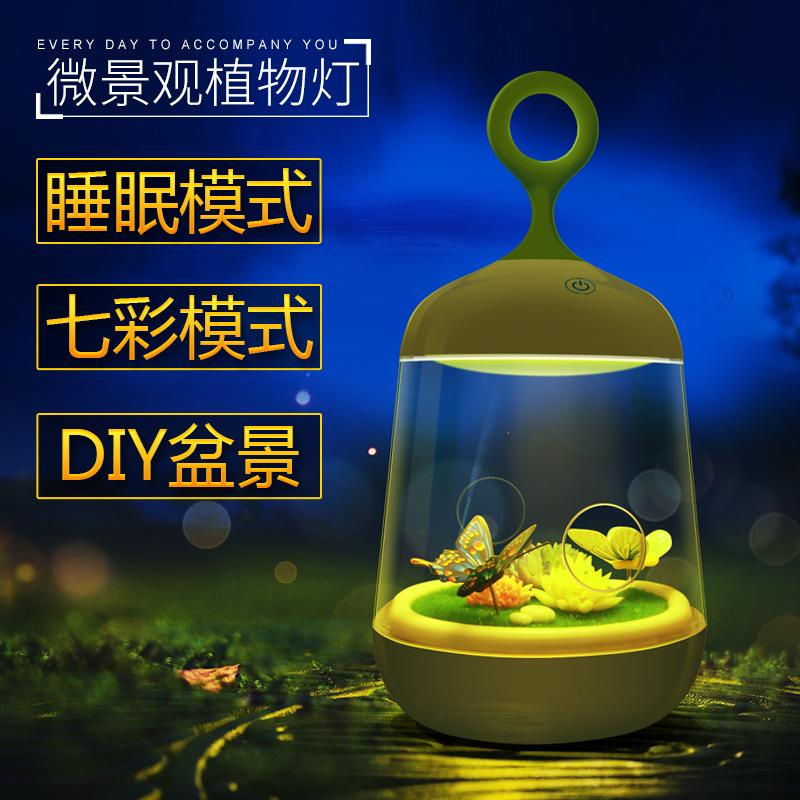XuanMax Rechargeable Micro Landscape Plant LED Night Light Portable Bedside Lamp Touch Sensitive Control Table Desk Lamp Bird Cage