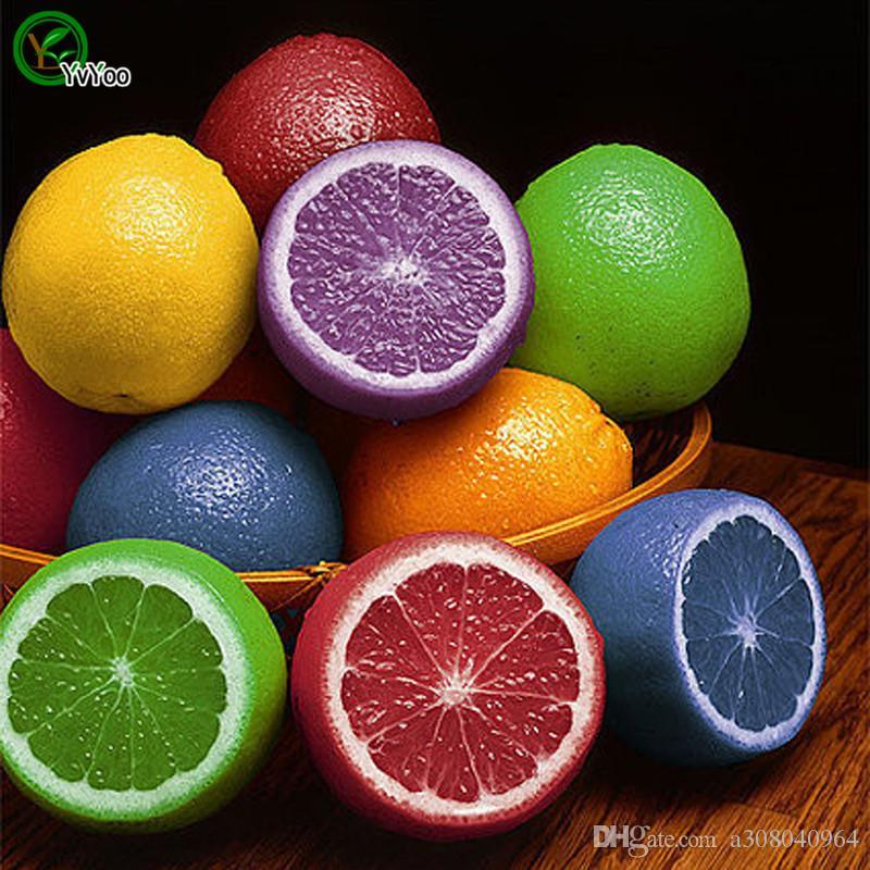 Colorized Zitronensamen Gartenpflanzen Bonsai Bio-Obst- und Gemüsesamen 30 Stück X007