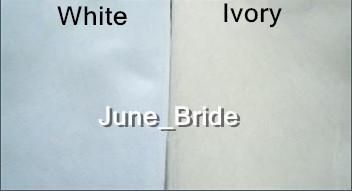 Fairy Fingertip Length Veil Alencon Lace Crescent Lace Edge Mantilla Bridal Veil Wedding Accessory Ivory White One Layer Wedding Accessory