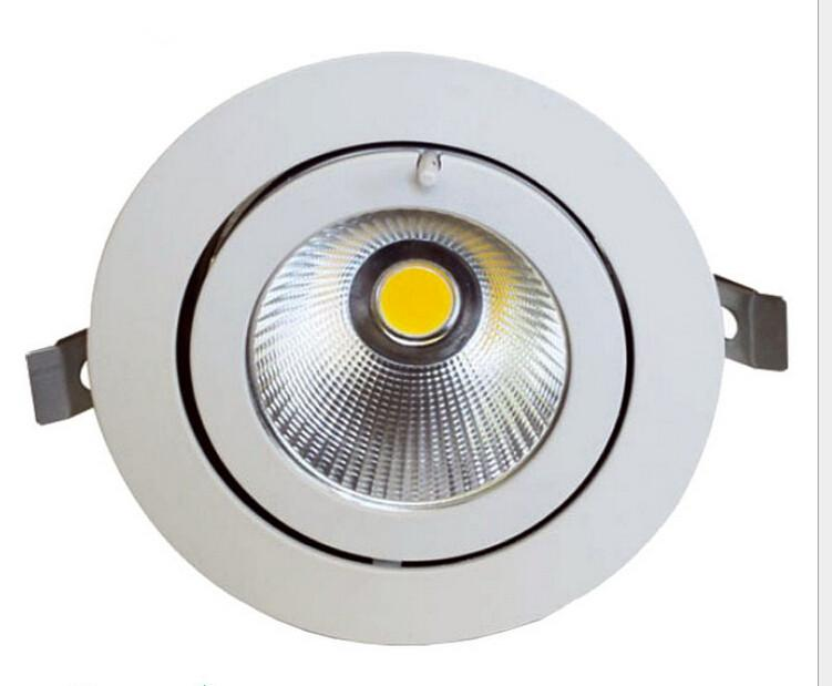 Factory wholesale 30W LED Trunk Downlight COB Ceiling lamp Adjustable recessed Super Bright Indoor Light cob led downlight AC85-265V