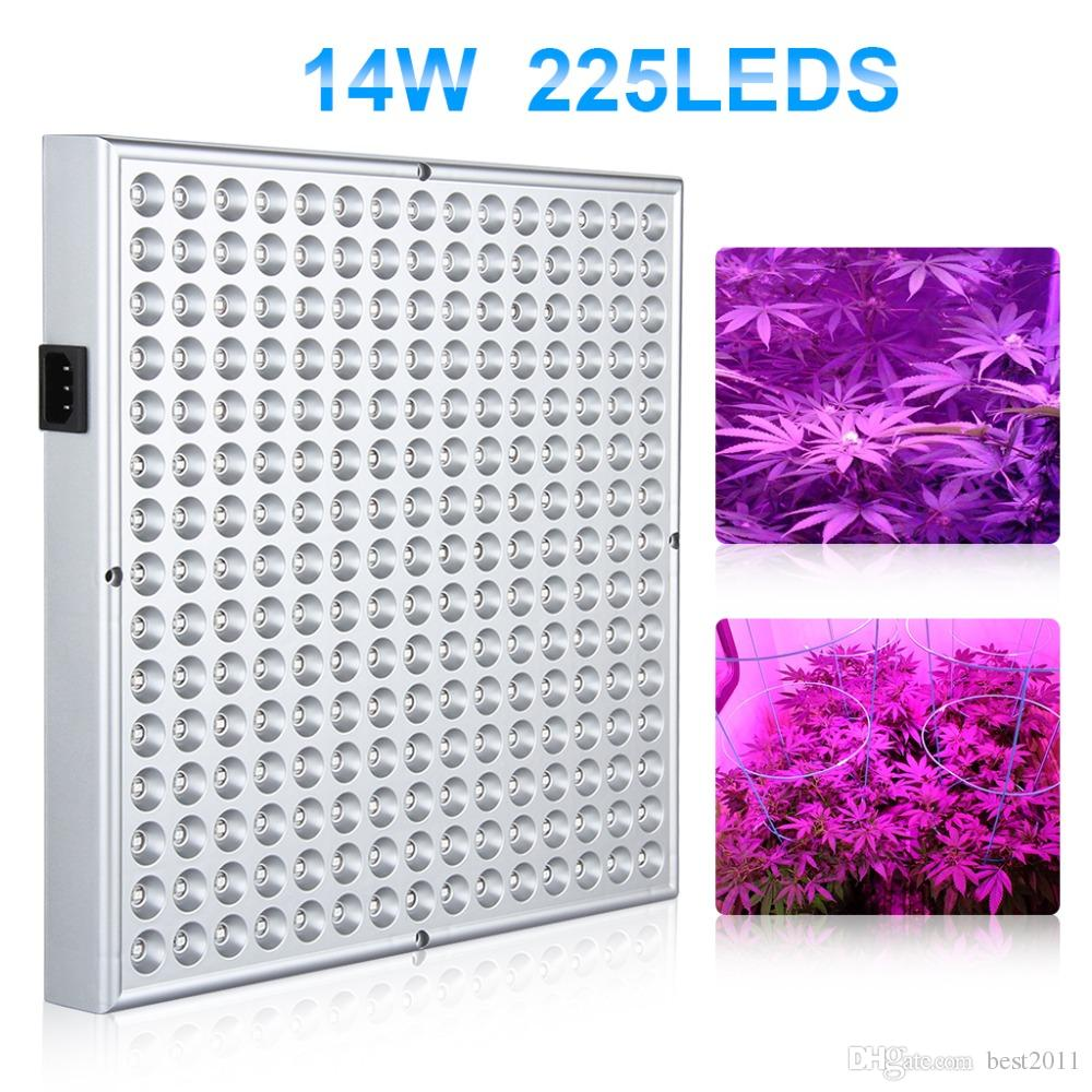 14W 3528 SMD Hydroponic Plant Grow Light for Plant Flower Vegetable Greenhouse Garden 225LED Red&Blue Indoor Plant Grow Light