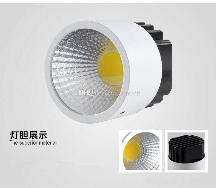 High Brightness COB 2X10W Square Double Dimmable Led downlight AC85-265V Epistar chip led ceiling spot lamp Cold/Warm white indoor lighting