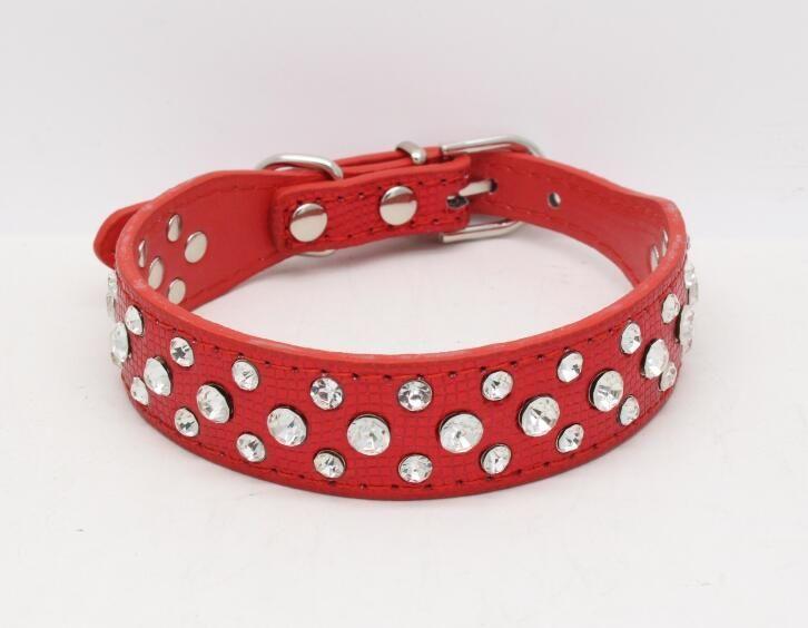2.5 cm de largura Bling Rhinestone diamante cat coleiras PU Leather Pet Strap para cães 5 cores G990