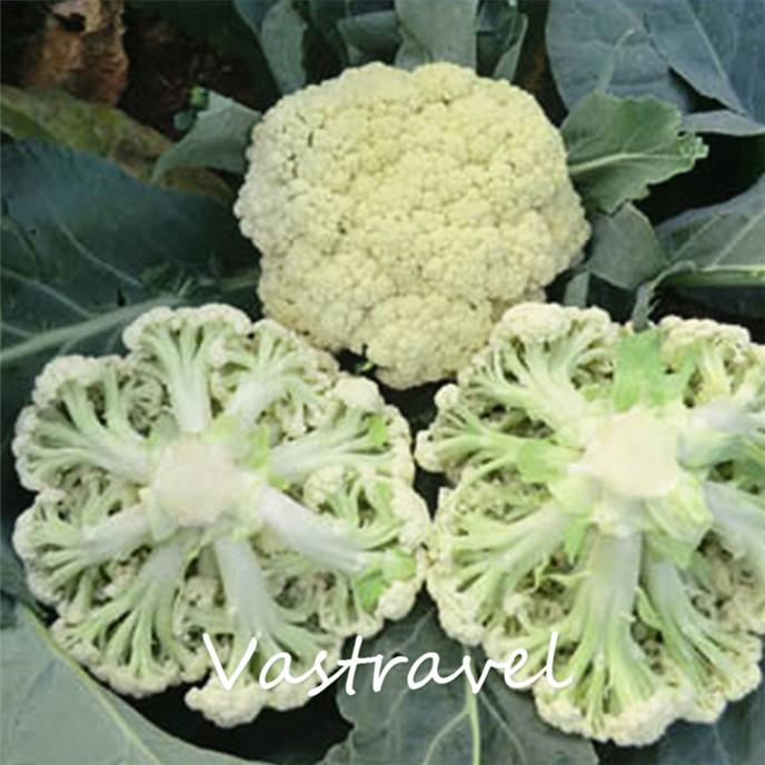 Excellent answer, asian grow seed veg consider