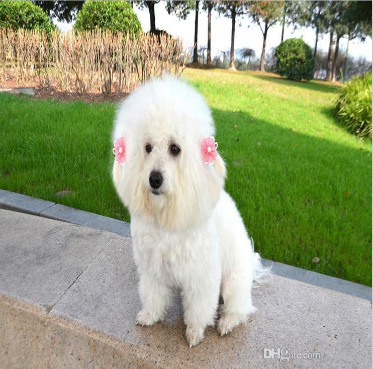 Decorações do animal de estimação arcos de cabelo bonito cão de estimação gato cabeça nó Moda cão borboleta bowknot bebê hairpin presente