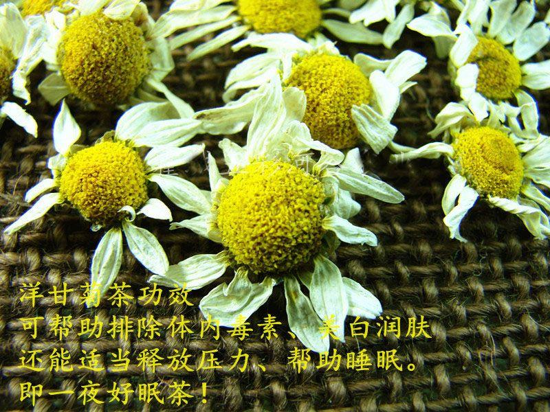 1000g Superfine Natural Dried Roman Chamomile Tea Organic Chamomile Flower Tea Bloom Chinese Herbal Tea Skin Food FT-037 wholesale