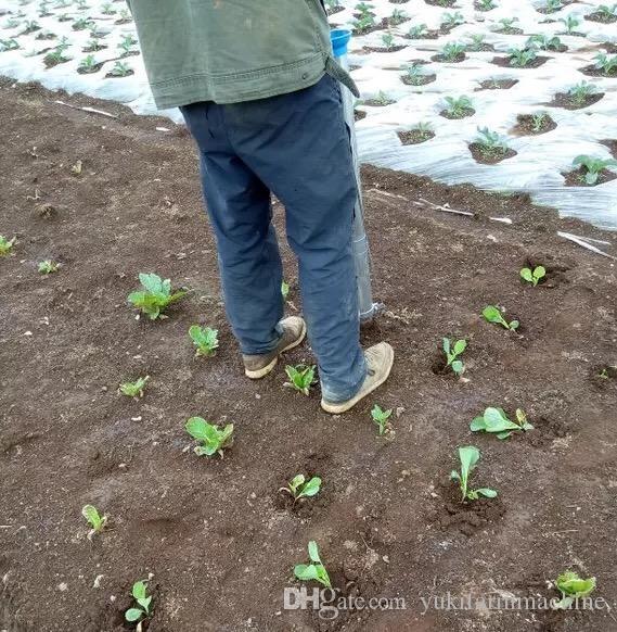 manuel planteuse de légumes planteuse de légumes en acier inoxydable planteuse outil de plantation planteuse de légume