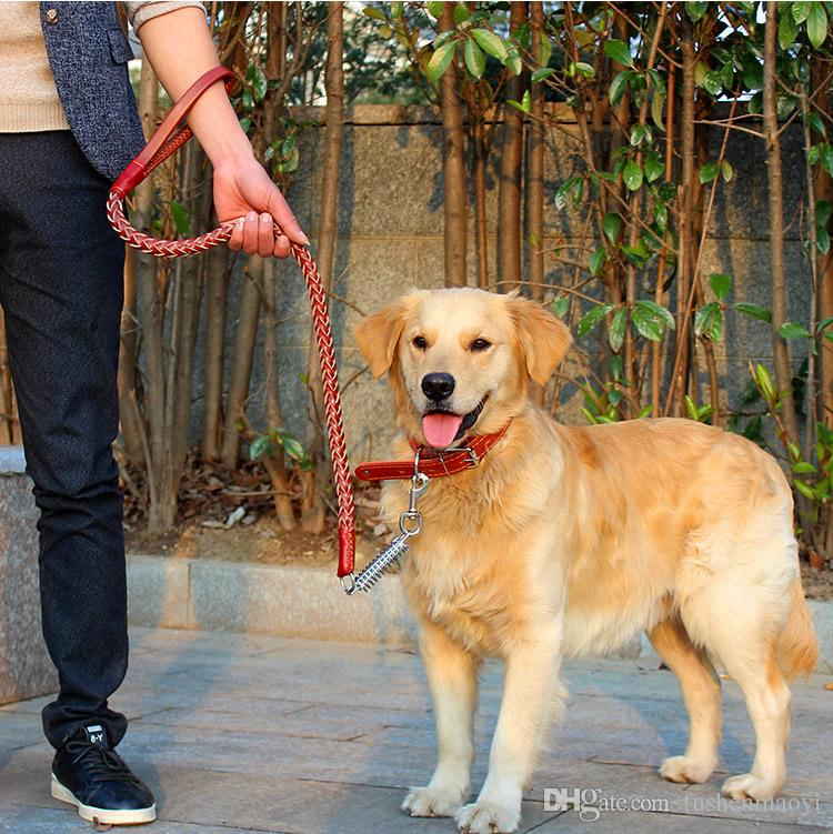 Heißer verkauf Hund zubehör Große Hundehalsbänder Leinen anzug Echtem Leder Hundehalsbänder und Echtem Leder Leinen Kostenloser versand