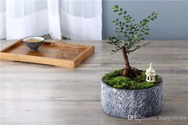 Miniatur Gnom Garden Miniatur Puppenhaus Fairy Garden ~ Gnome Garten Starter Zubehör Kit ~ neue Pflanzer Topfpflanzen Samen für Gardeni