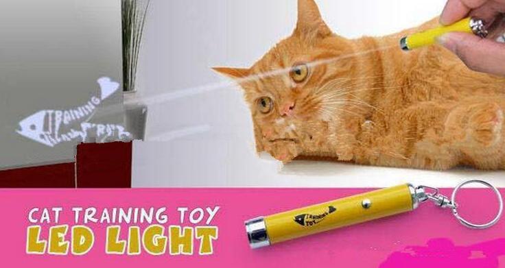 새로운 도착 크리 에이 티브 및 재미있는 애완 동물 고양이 장난감 밝은 애니메이션 마우스와 레이저 포인터 빛 펜 LED