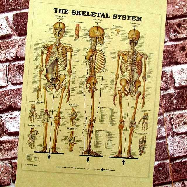 Beste Vintage Diagramme Zeitgenössisch - Der Schaltplan - greigo.com