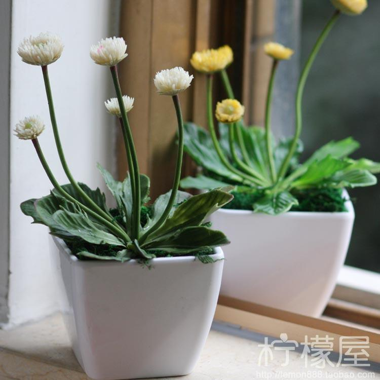 2017 5 Head Small Chrysanthemum Plastic Cup Mini Potted Plants Flowers Flower Simulation Plant Living Room Office Decoration From Pengyaod76