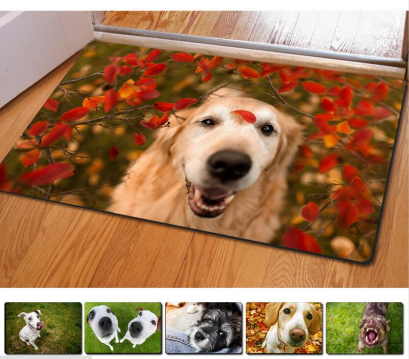 Fashion Kawaii Welcome Floor Mats Animal Cute Cat Dog