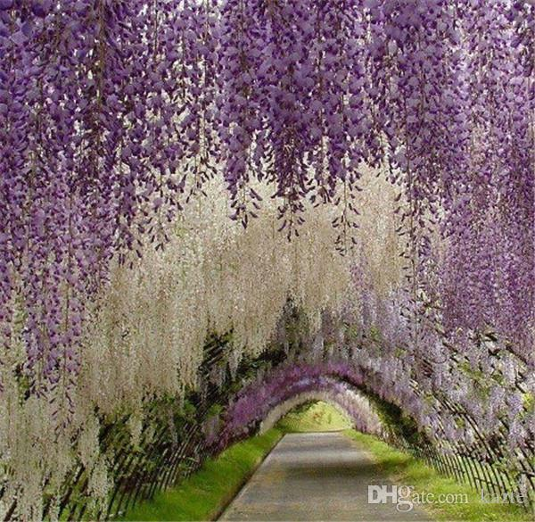 Great Gatsby Home Party Garden Decoation De Fleurs Élégante Artificielle Soie Fleur Wisteria Décorations De Mariage De Vigne