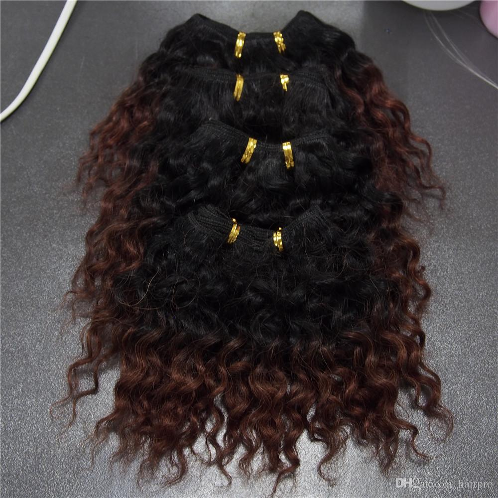 Ombre Human Hair Extension 6 Inch Brazilian Water Wave Curly Hair